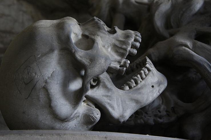 skull-476740_640